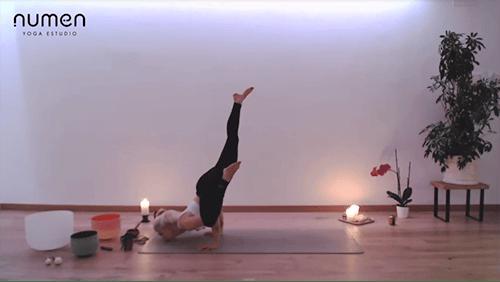 Vinyasa multinivel, balances de brazos, chinstand
