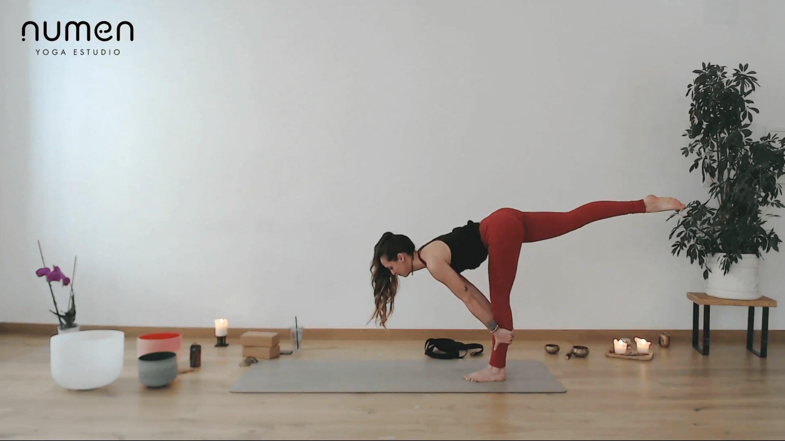Vinyasa multinivel equilibrios y standing split