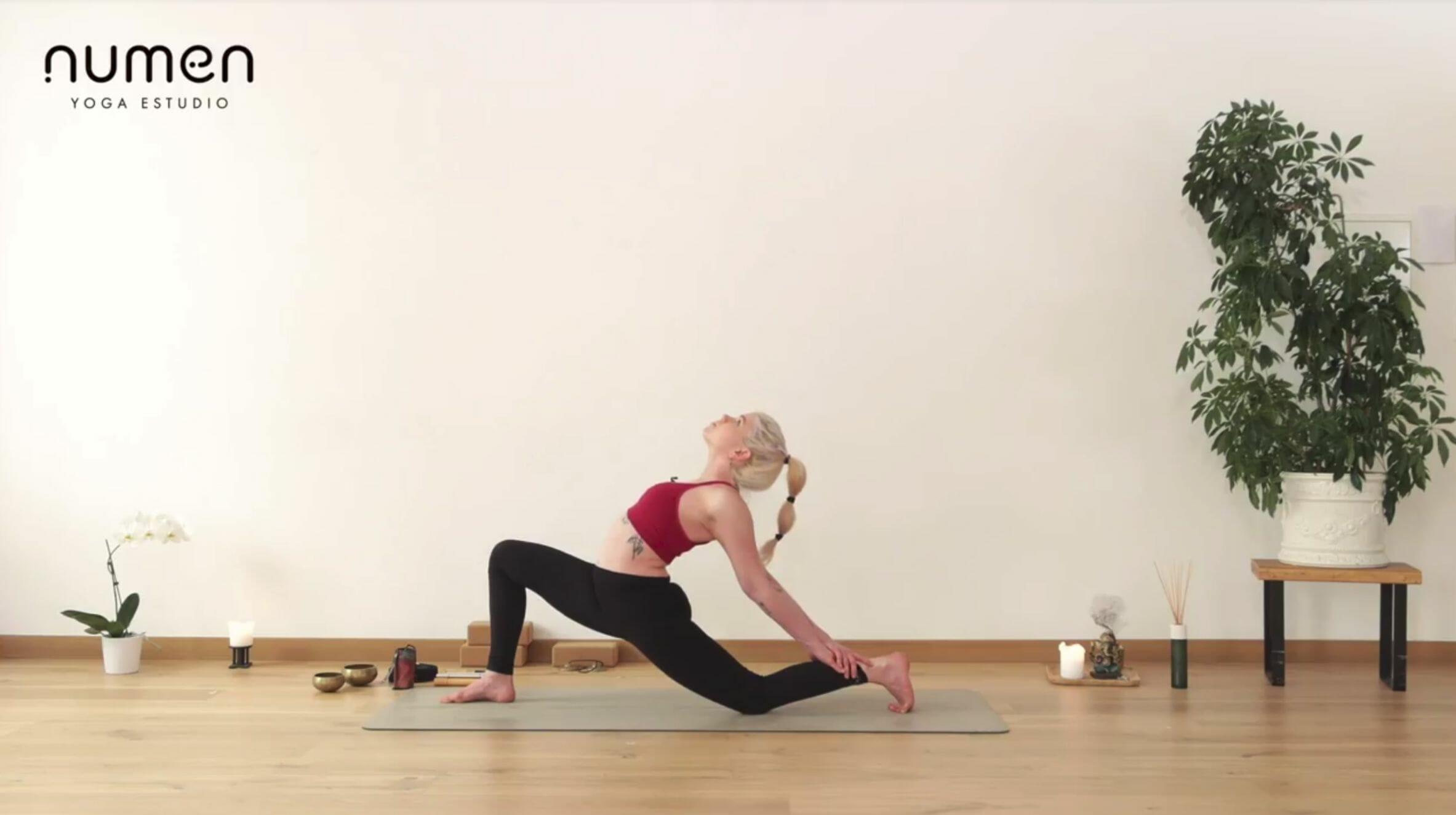 Vinyasa avanzado con extensiones de espalda